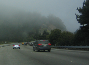 Fog on freeway